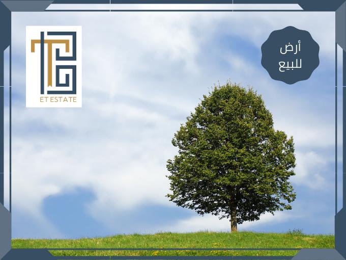 أراضي للبيع في عمان بواسطة ET Estate