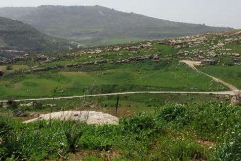 أرض للبيع في ناعور بواسطة ET Estate - أراضي للبيع