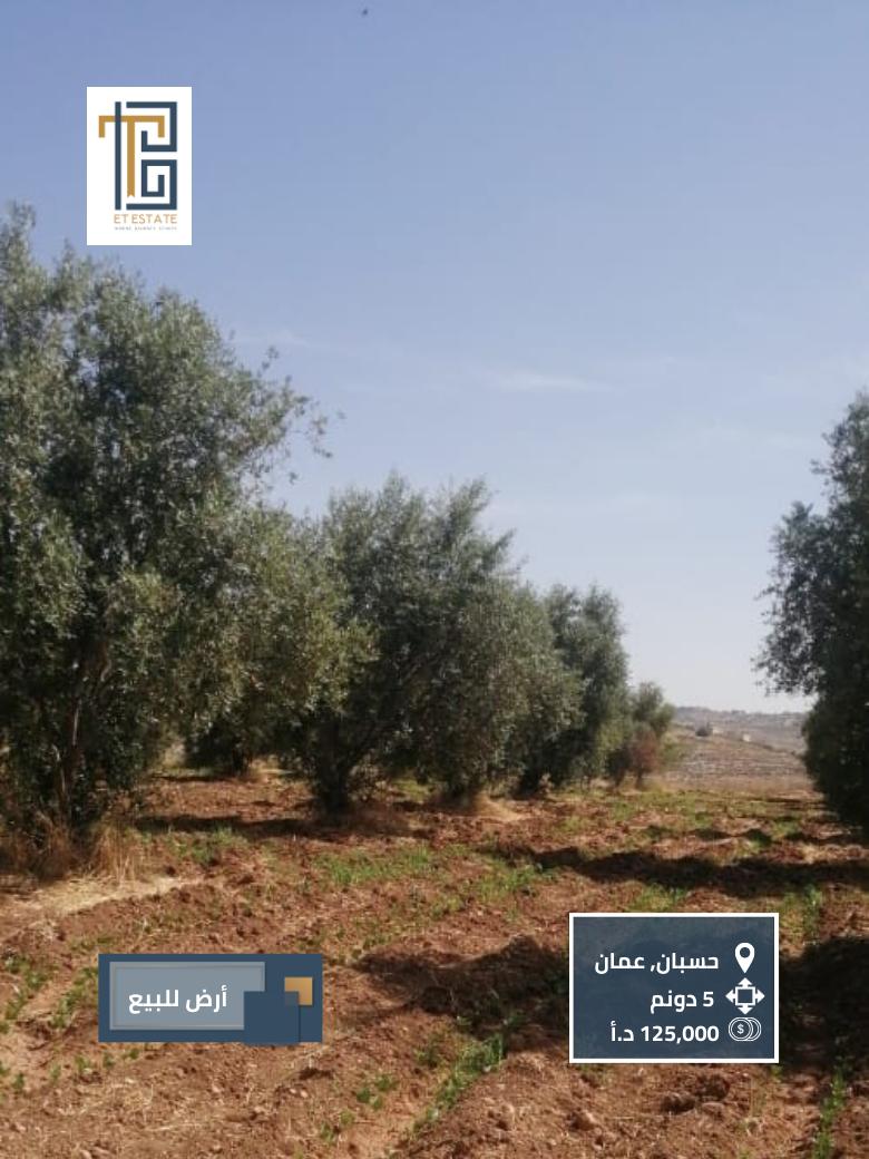قطعة أرض للبيع في حسبان