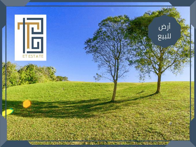 أراضي للبيع في دابوق في عمان